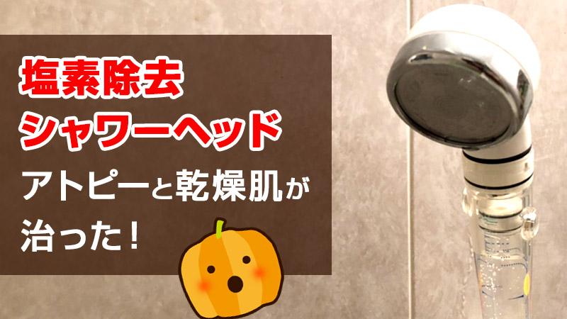 乾燥肌やアトピー対策でコスパ抜群の塩素除去シャワーヘッドのおすすめ!【アラミック イオニックCシャワー」