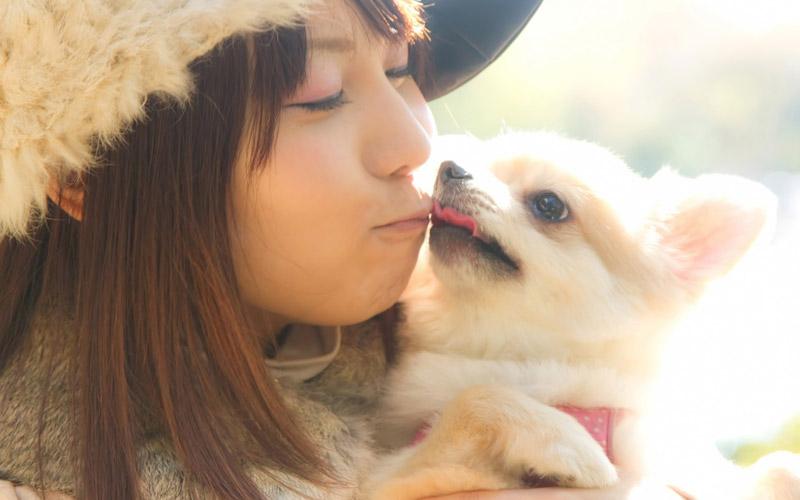 犬とキスをする女性