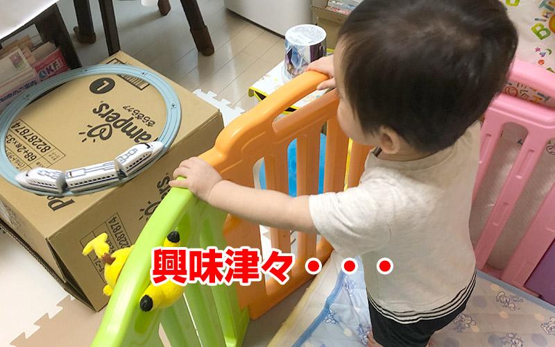 1歳半の子供も興味津々